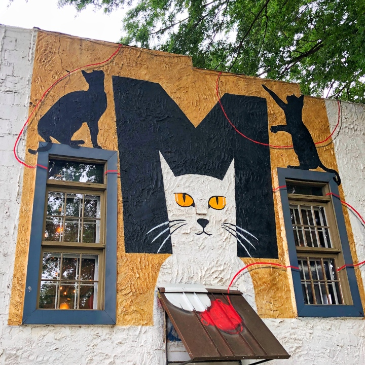 Mac Tabby Cat Café in NoDa