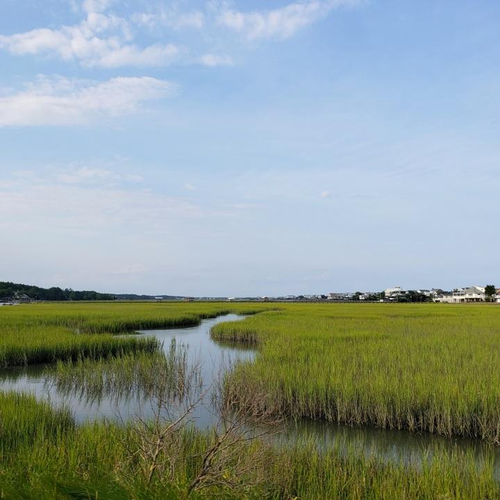 Pawley's Island Creek, SC